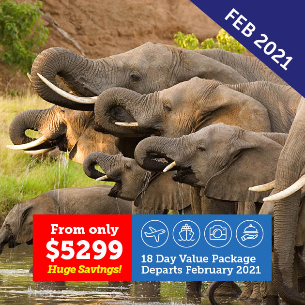 Exploration of Southern Africa Cruise & Tour
