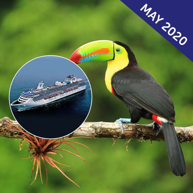 New York, Central America & Panama Canal Cruise
