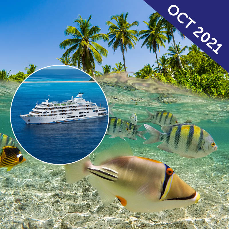 Fijian Islands Discovery Cruise
