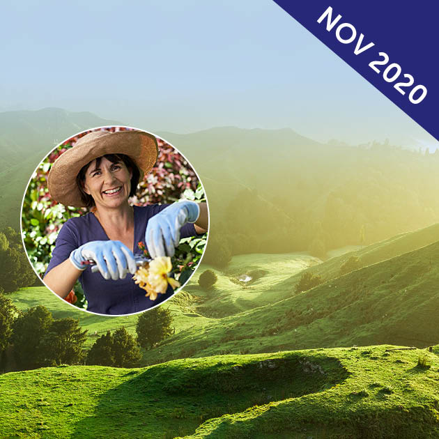 Garden Cruise to New Zealand with Sue McDougall